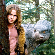 Тест Твое магическое существо в мире Гарри Поттера
