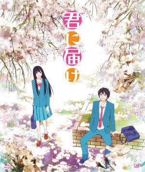 kimi-ni-todoke-2nd-season-dvd-300x355