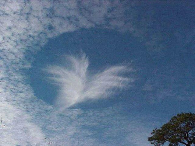 Картинка для Какое ты небо?