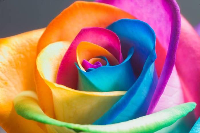 Картинка для Цвет и характер