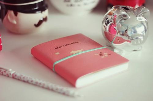 Видео сделать личный дневник