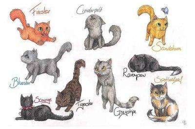 Тесты для девочек про котов