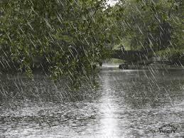 Картинка для Однажды,в дождь..