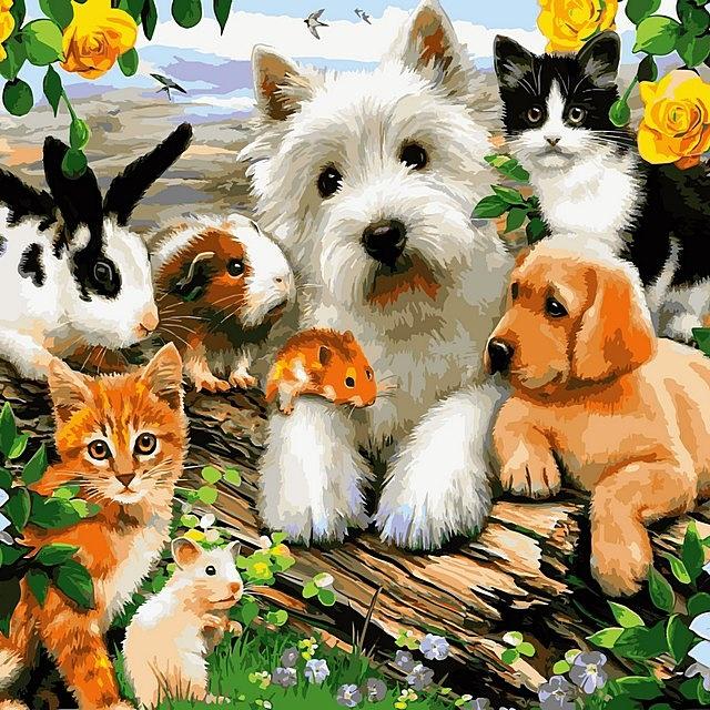 Картинка для Какое ты животное?