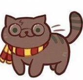 Картинка для Тест на знание Гарри Поттера