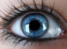 Картинка для Что твои глаза могут сказать о тебе?