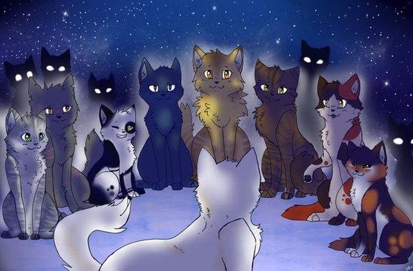 Картинка для Кто ты из Котов воителей по знаку зодиака 2.