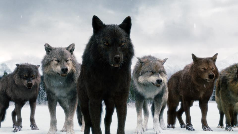 Сага волков картинки декоративная