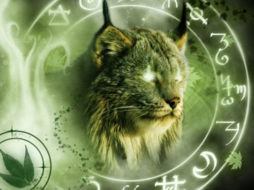 Картинка для Твое тотемное животное по знаку зодиака. Часть 1.
