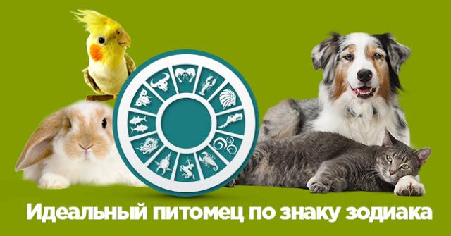 Картинка для какое ты животное по знаку зодиака?