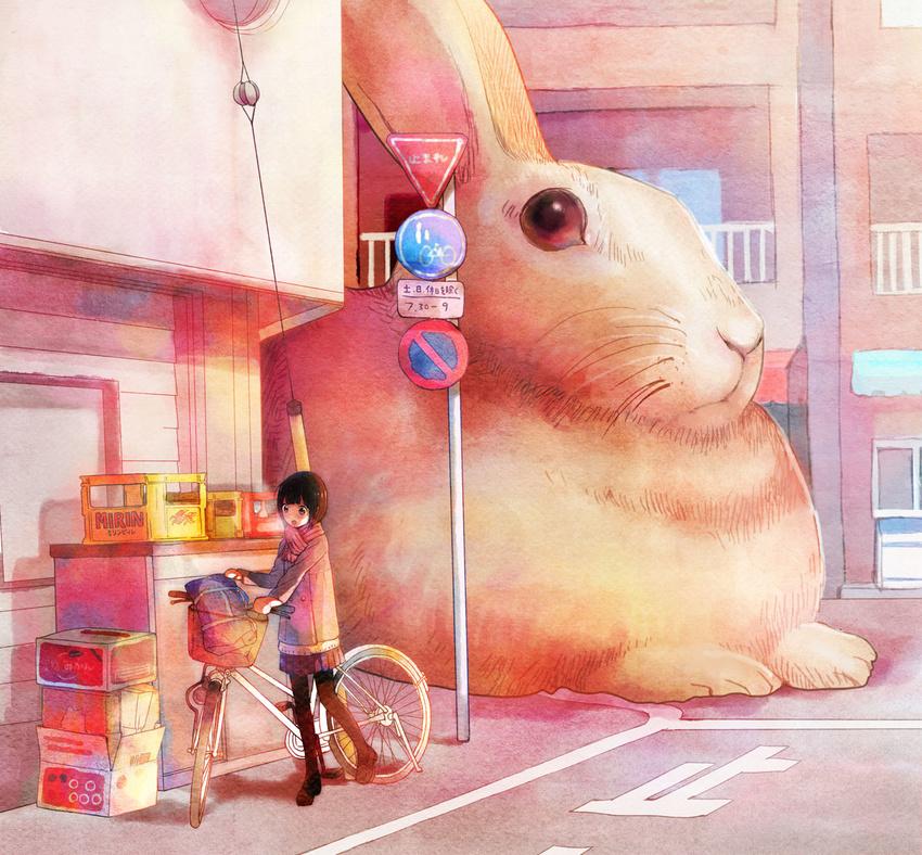 Картинка для Подбор картинок с кроликами.(▔∀▔)
