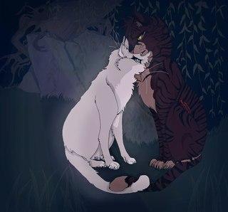 Картинка для На сколько хорошо ты знаешь Котов-Воителей?