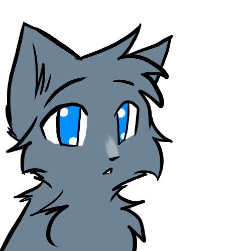 Картинка для Твоя внешность и имя в Котах Воителях