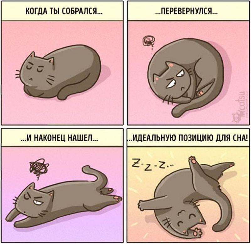Картинка для смешные комиксы с котиками)))