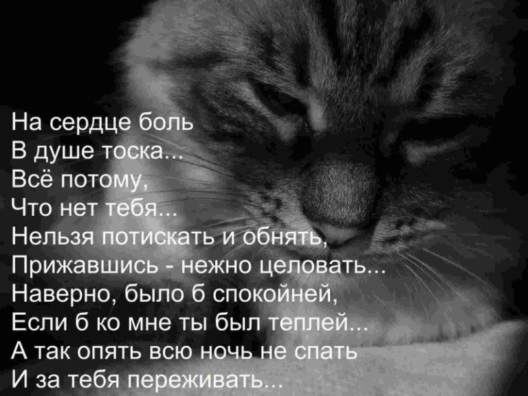 Стишки с грустными картинками