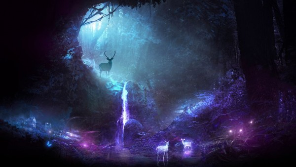 Картинка для ✦ Forgotten Forest ✦