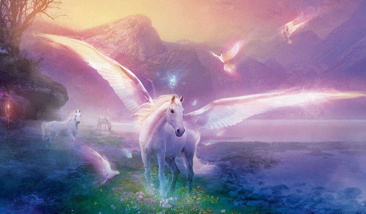 Картинка для Волшебный мир. 1 часть: твой проводник