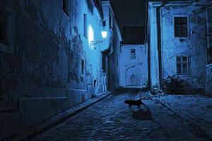Картинка для Ночное приключение. Твоя история