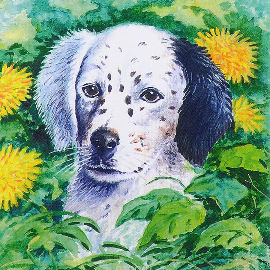 Картинка для Сочинение о собаке