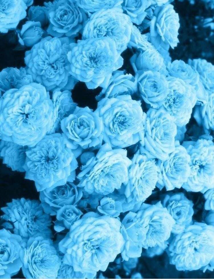 Картинки в голубом цвете тумблер, человека
