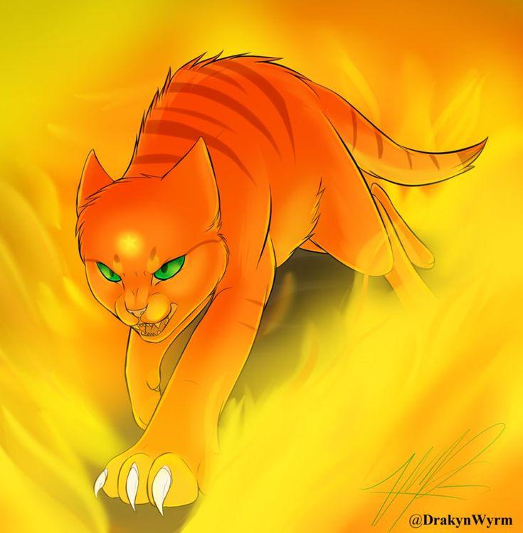 Для, картинки рыжих котов воителей