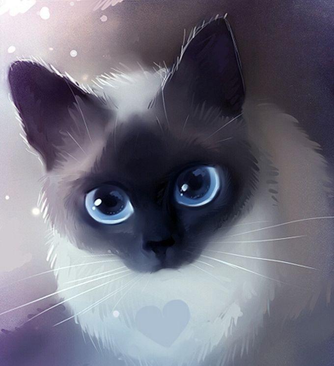 Кот няшка картинки