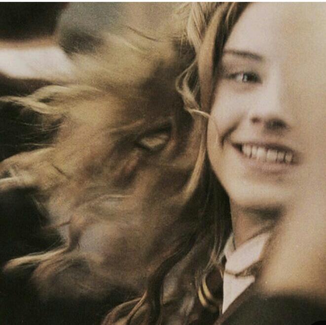 Картинка для -А может,это крик о помощи?|Hermione Granger|