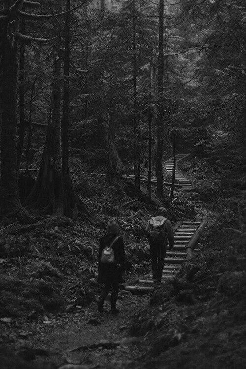Картинка для Прогулка по лесу. Заключение.