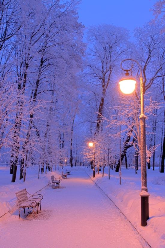 Картинка для Твоя зима.
