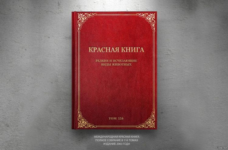 тест международная красная книга