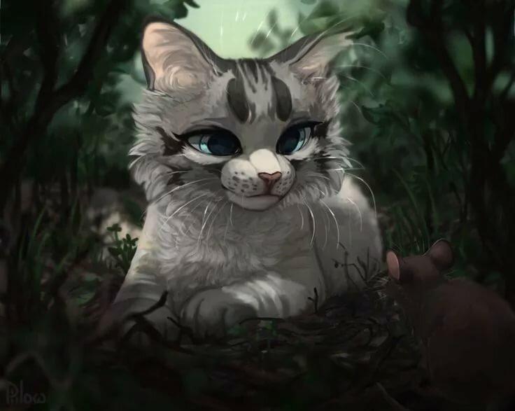 Картинка для Ты новый персонаж Котов-Воителей.