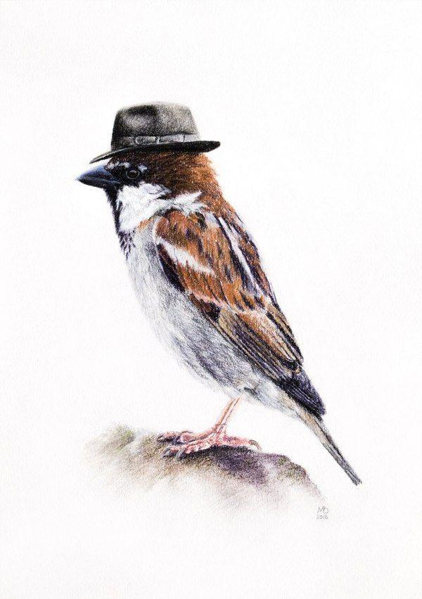 Картинка для ` Birds `