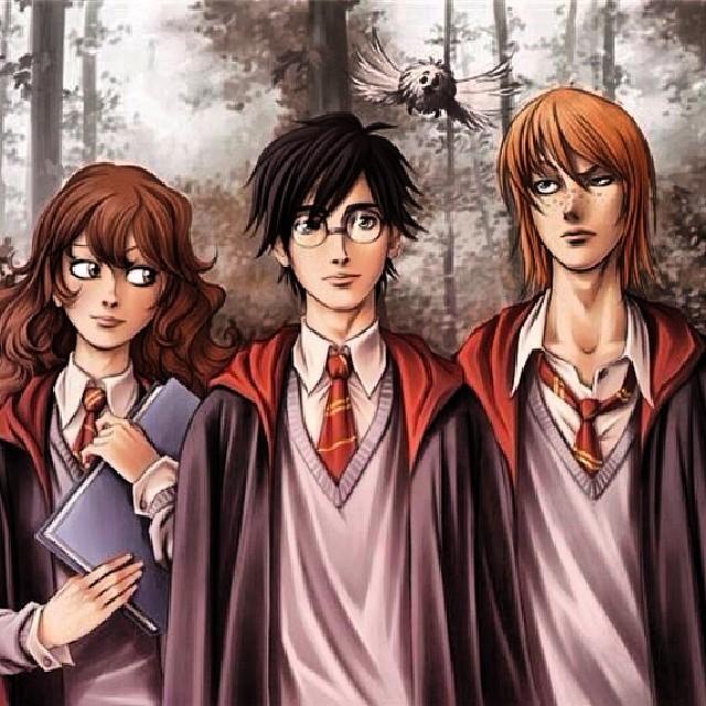 Картинка для Ты новый персонаж в Гарри Поттере и как к тебе отнесутся герои? (Для дево4ек)