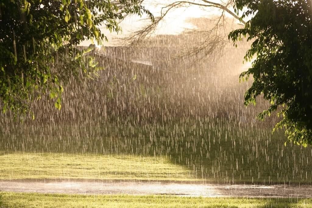 Картинка для Какой ты дождичек