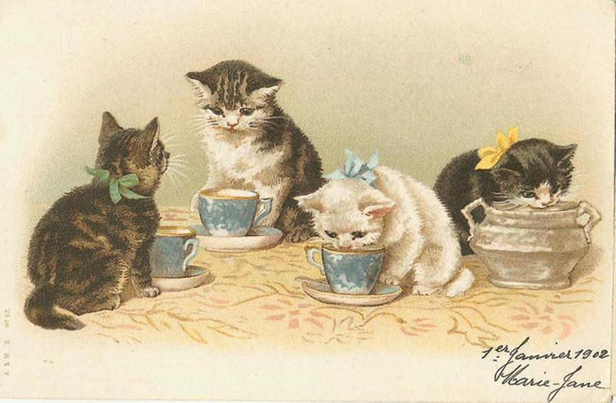 картинки для декупажа коты и кошки котята тогда она