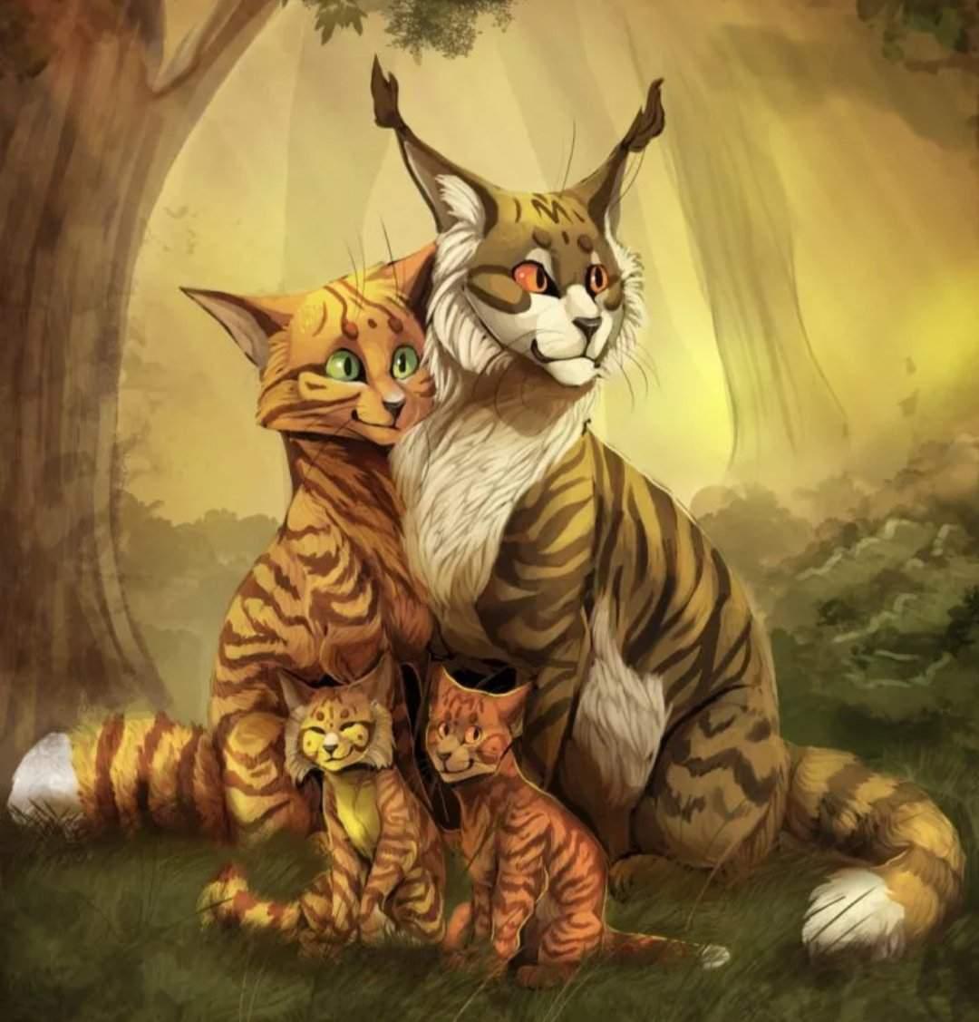 Картинка для ты новый кот воитель+реакция на тебя