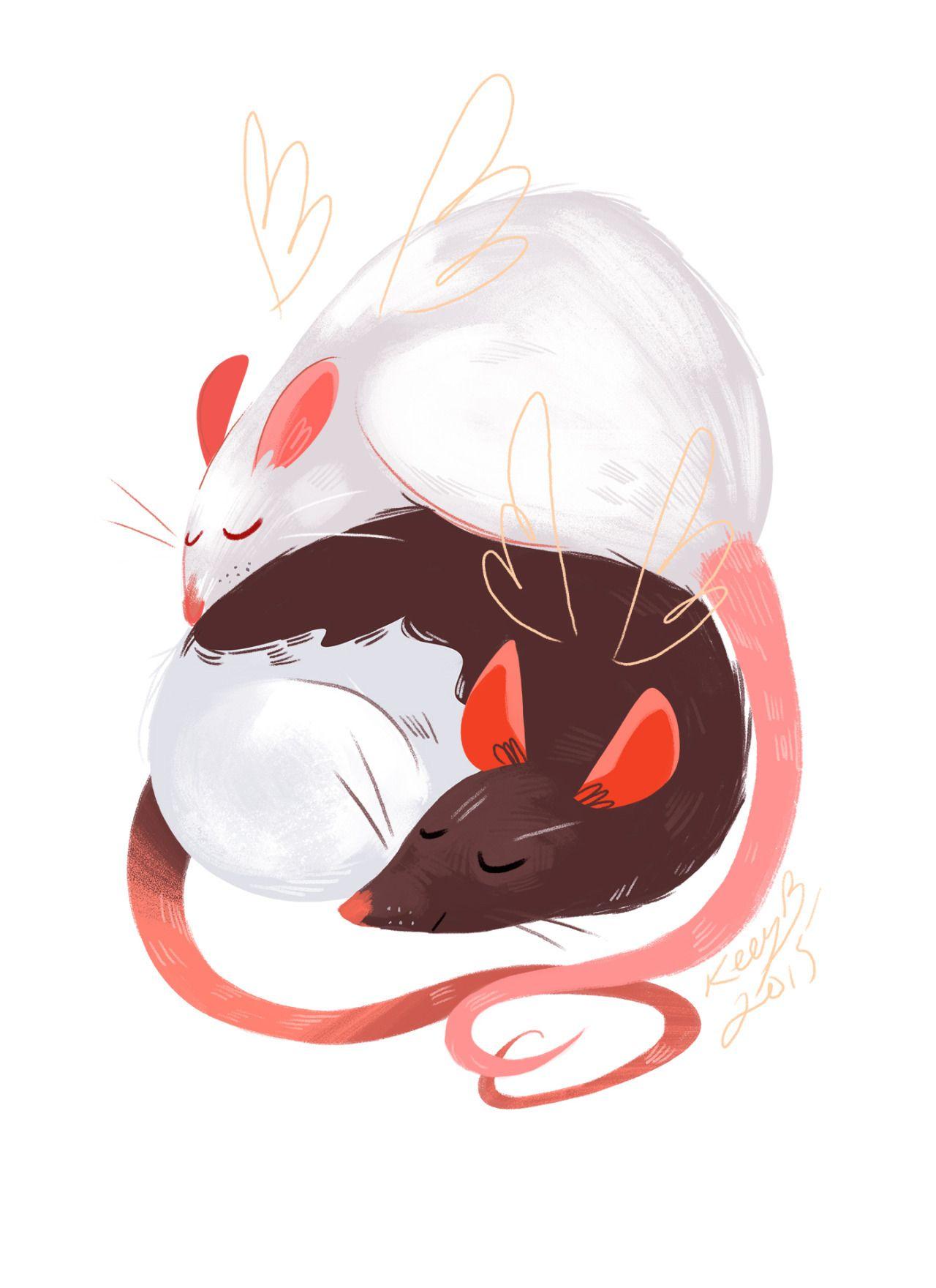 Картинка для Мыши и крысы