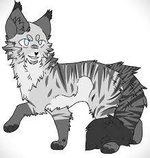 Картинка для Твоя история в котах — воителях