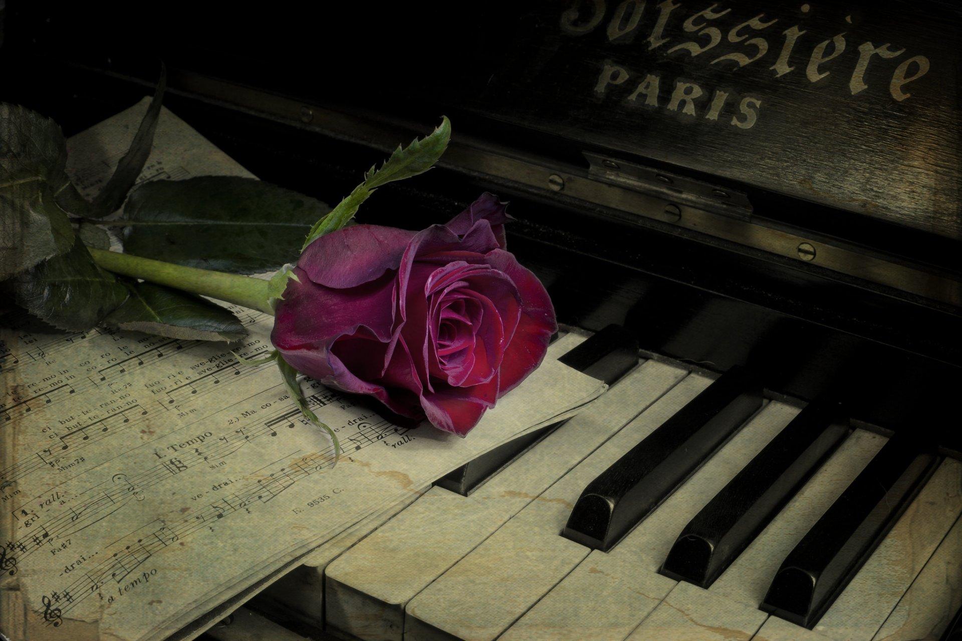 Розы из бумажных салфеток фото этот наряд