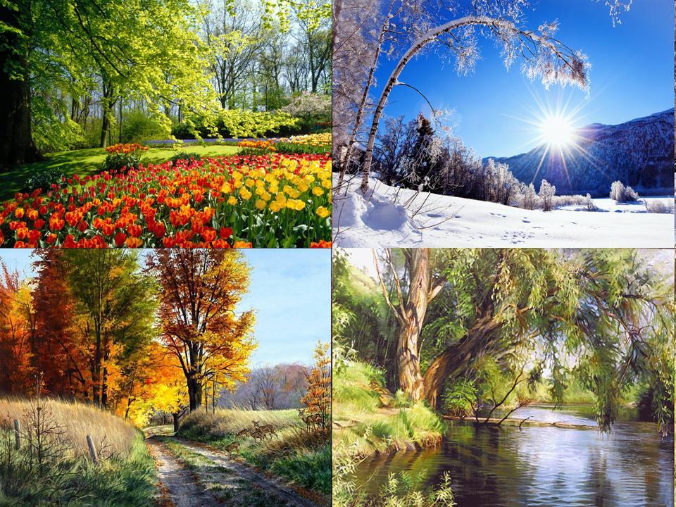 Картинки времен года лето осень зима весна лето