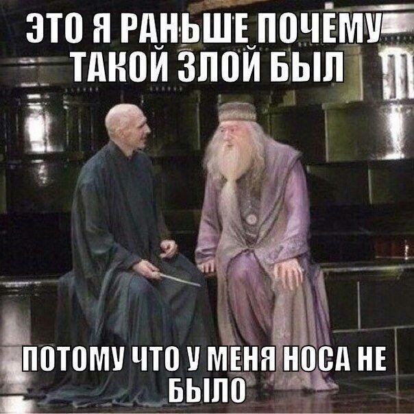 Картинка для Мемы про Гарри Поттера