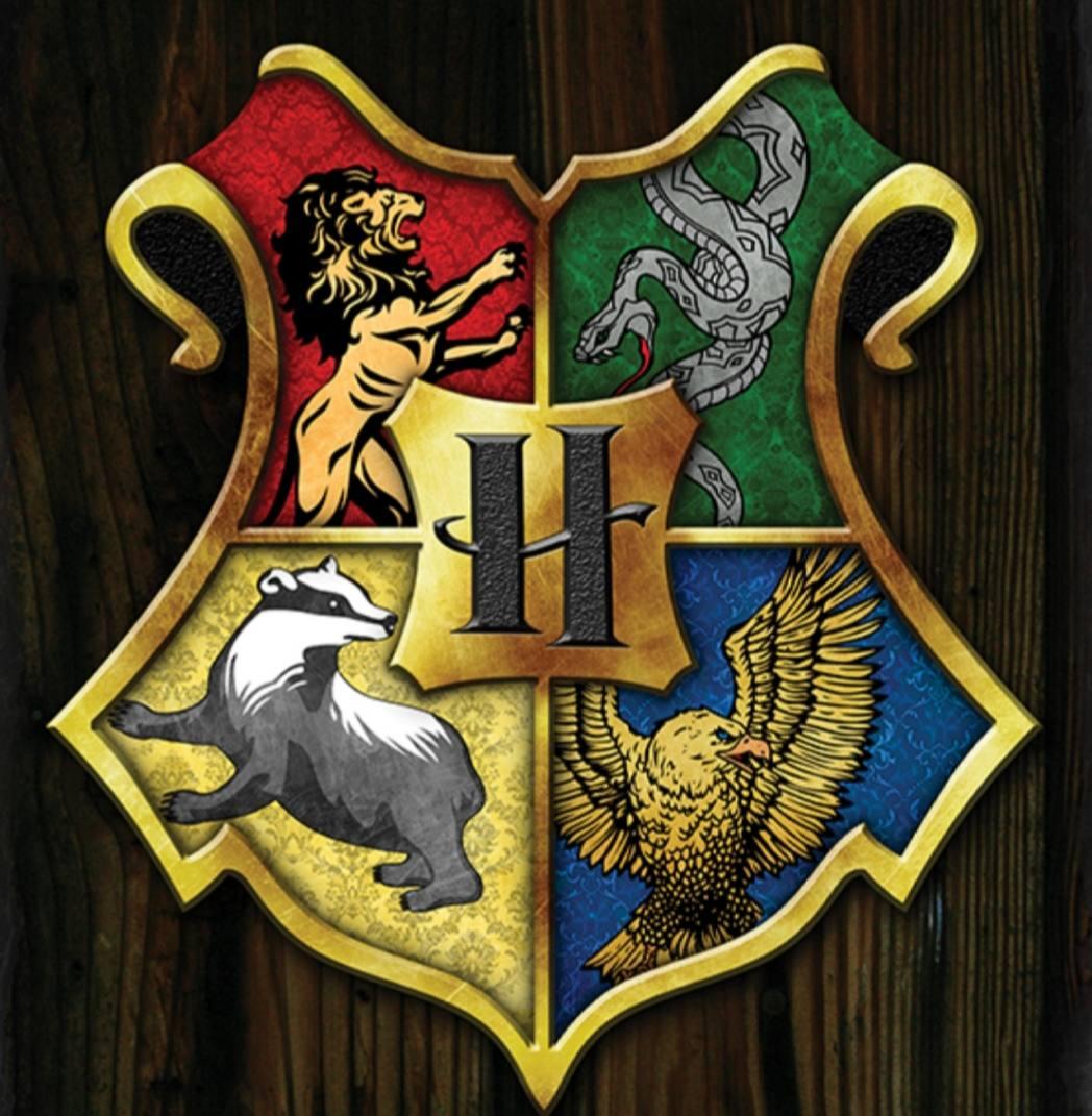 Картинка для Ты в Хогвартсе + отношение персонажей к тебе