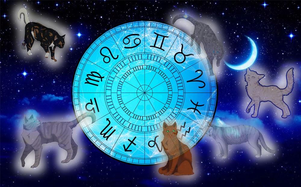 Картинка для Кто ты из котов воителей по знаку зодиака?