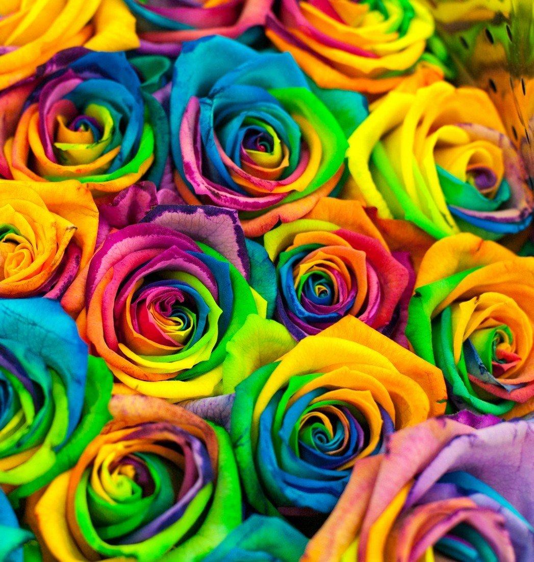 Цветочные салоны нижнего новгорода фотогалерея такого