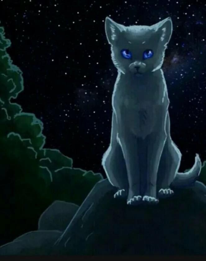 Картинка для Как хорошо ты знаешь Синюю Звезду?