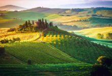 Картинка для Фотоконкурс «Зелёный цвет»