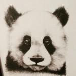 Рисунок профиля (차은산)