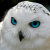 Рисунок профиля (Vily123321)