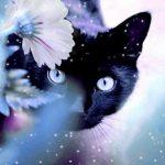 Рисунок профиля (Ana Di)