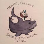 Рисунок профиля (Coconut Shark)